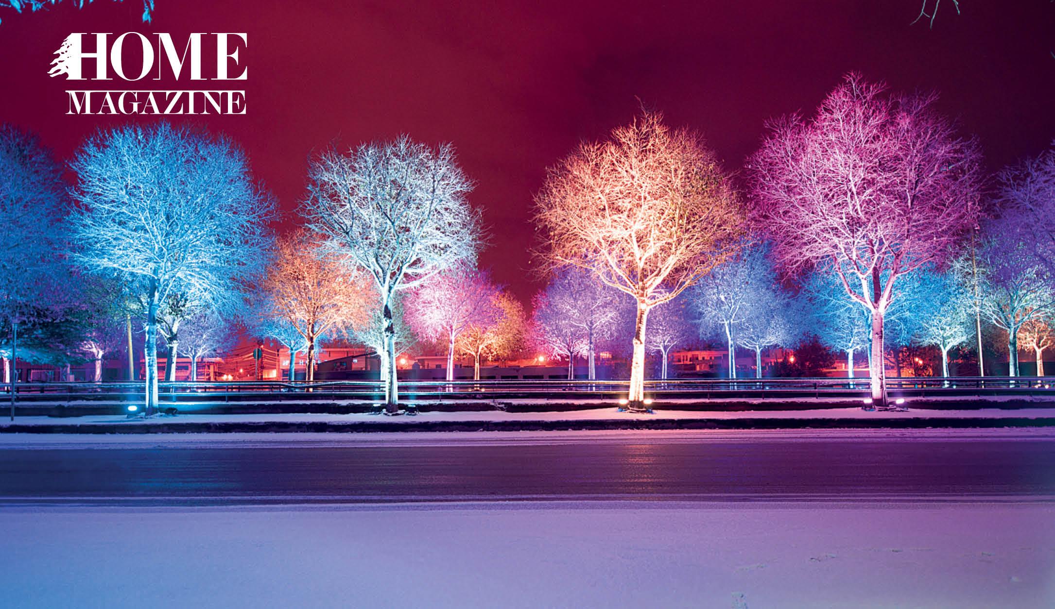 Lightened trees