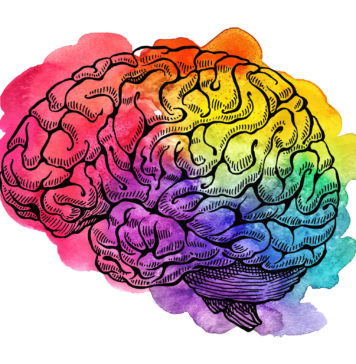 Multicolored brain drawing