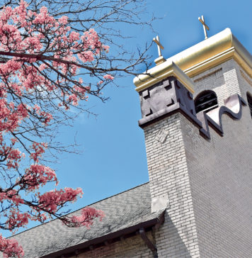 Church with blue sky in background and a tree of pink flowers