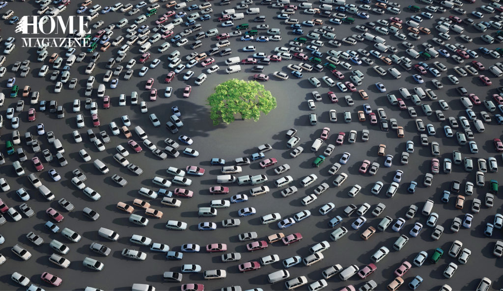 Several cars in a circular direction around a green tree