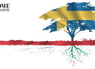 Illustration of a tree and its roots in red, blue, green and yellow colors