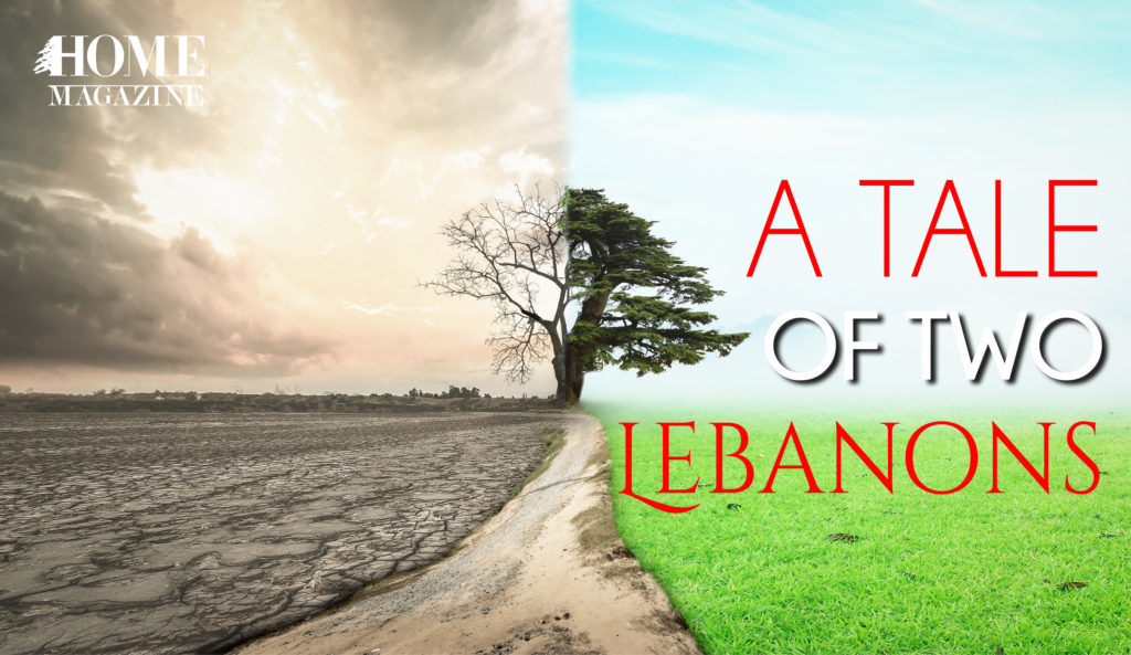 a tale of two lebanons with a tree one in a bad condition and the other part in a greenery and sunny condition