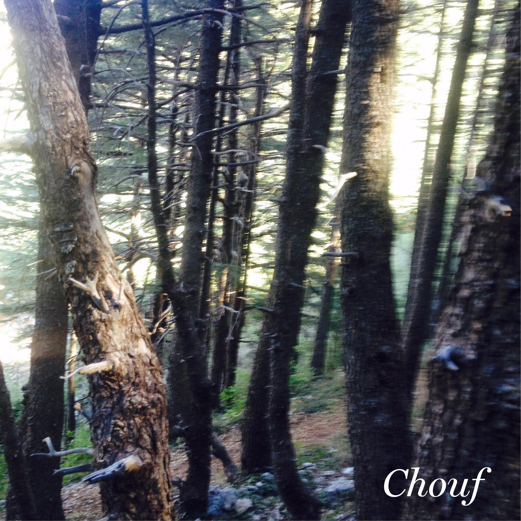 chouf lebanon